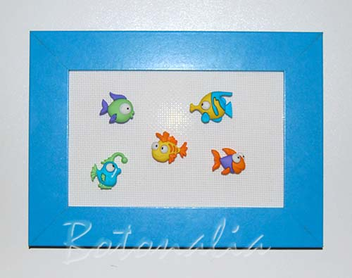 marco_peces_00