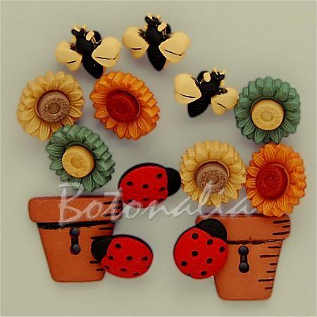 Botones de macetas, bichos y flores de otoño