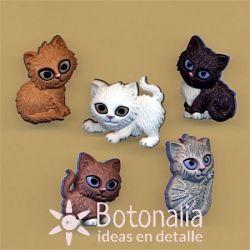 Dress-it-Up - Kitten Kaboodle