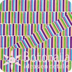 Grosgrain multicolor stripes 2