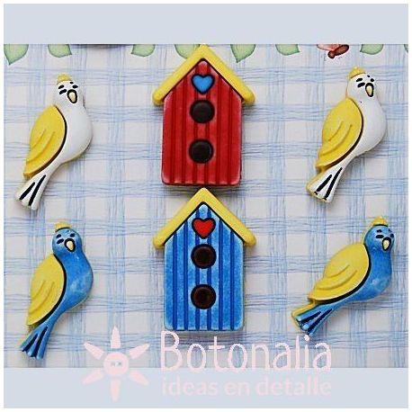 Birds and bird houses