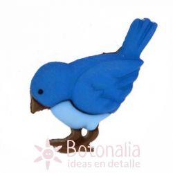 Blue bird 24 mm