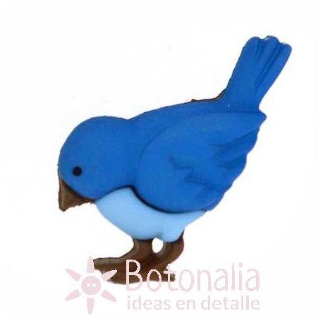 Pájaro azul 24 mm