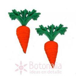 Carrot 24 mm