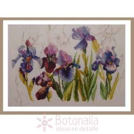 Irisses - Triptych blue Flowers