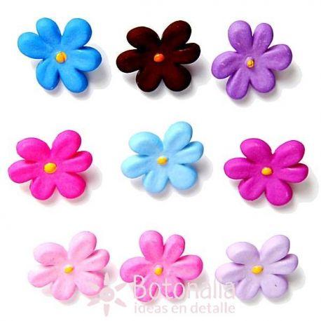 Violetas de Primavera
