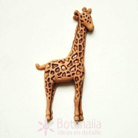 Giraffe 43 mm