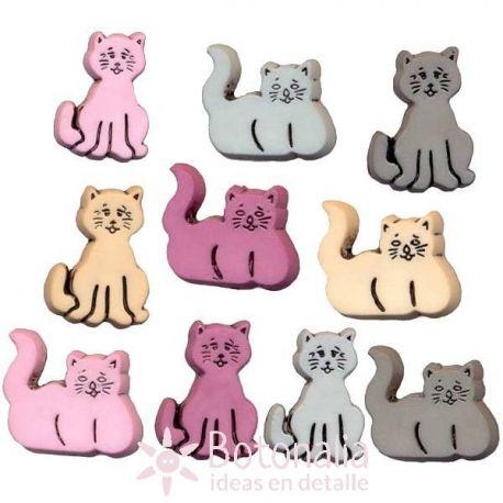 Gatitos variados