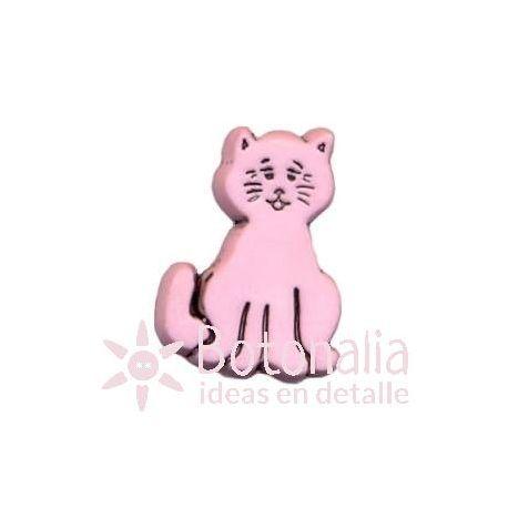 Kitten 03