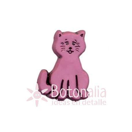 Kitten 05