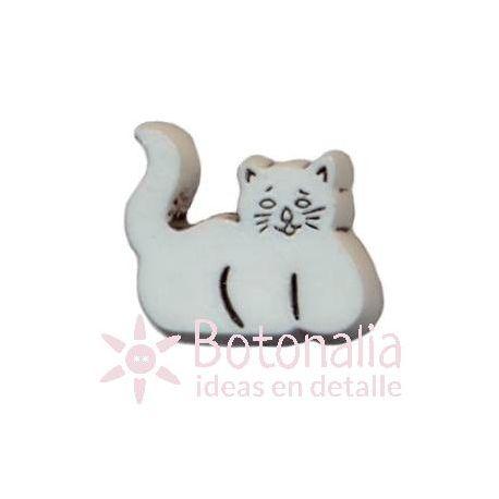 Kitten 08