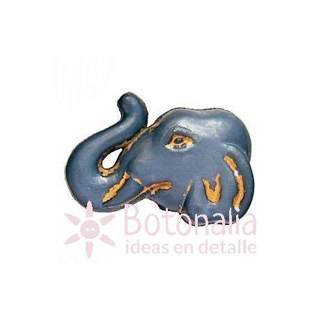 Head of an elephant