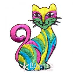 Multicolor cat