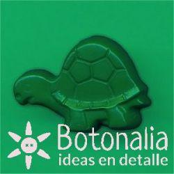 Tortuga in green
