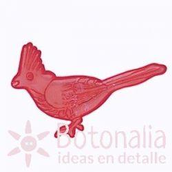 Cardenal rojo transparente