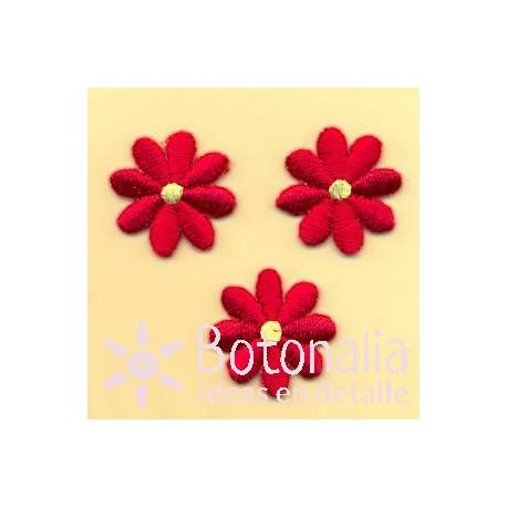 Daisies in scarlet red