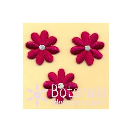 Daisies in crimson red
